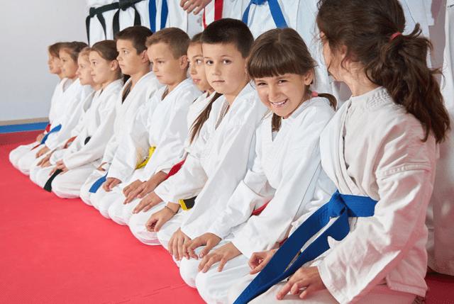 Kidsvirtualleader, Fairwood Martial Arts