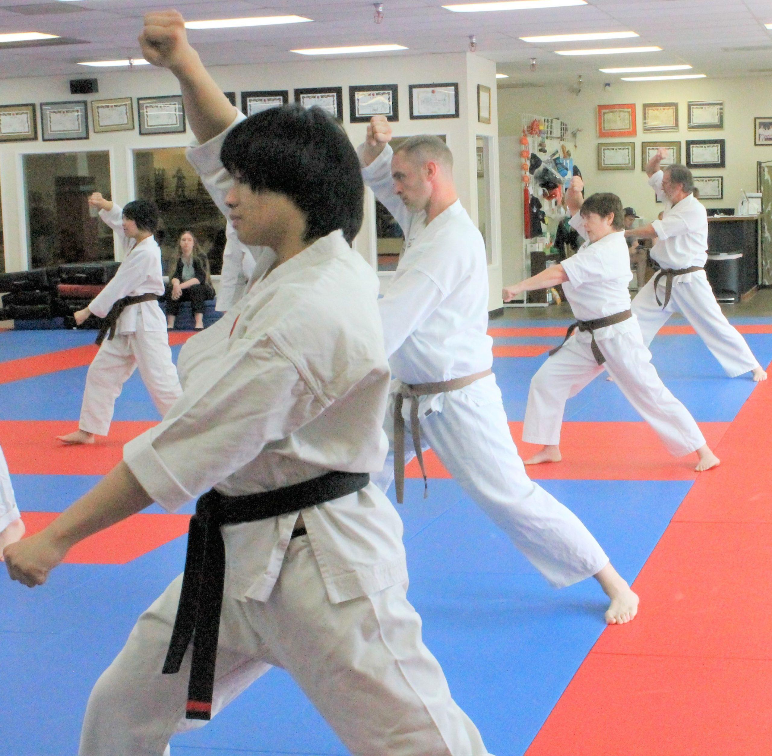 IMG 2950 3 Scaled, Fairwood Martial Arts